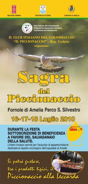 sagra_del_piccionaccio_2010.jpg