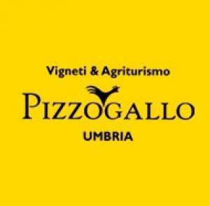 0_logo_pizzo_gallo.jpg